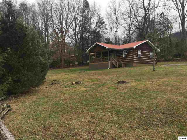 4426 Flatt Rd, Cosby, TN 37722 (#216114) :: SMOKY's Real Estate LLC
