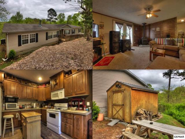 1020 Pleasure Road, Sevierville, TN 37876 (#216172) :: Four Seasons Realty, Inc