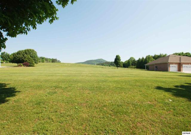7617 Powderhorn Trail, Townsend, TN 37882 (#216193) :: SMOKY's Real Estate LLC