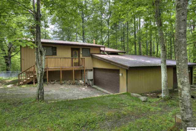 120 Misty Way, Cosby, TN 37722 (#216203) :: SMOKY's Real Estate LLC