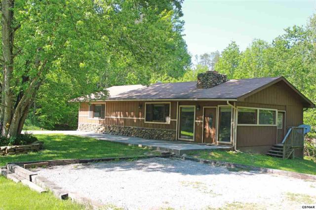 4527 Donna Allen Way, Cosby, TN 37722 (#216204) :: SMOKY's Real Estate LLC