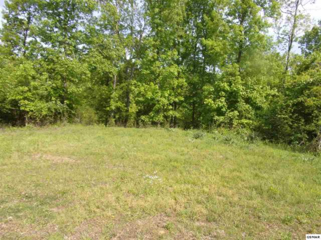 lots 1300-1309 Highrise Dr 757 Watersedge, Baneberry, TN 37890 (#216210) :: Colonial Real Estate