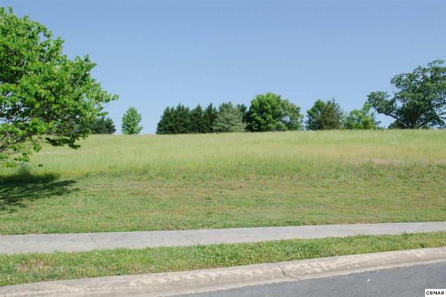 Lot 24 Park Place Ave, Sevierville, TN 37865 (#216214) :: Billy Houston Group