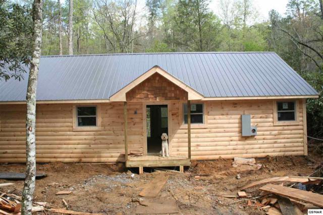 Riversong Way, Gatlinburg, TN 37722 (#216218) :: SMOKY's Real Estate LLC