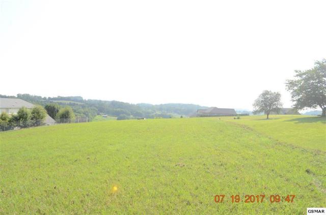 149 Golf View Blvd, Dandridge, TN 37725 (#216221) :: Four Seasons Realty, Inc