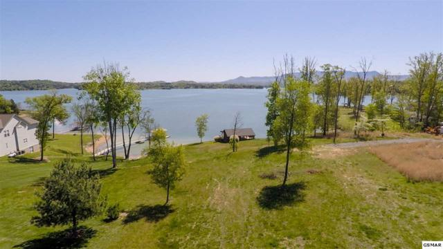 lots 53 & 54 Island View Rd., Sevierville, TN 37876 (#216253) :: The Terrell Team