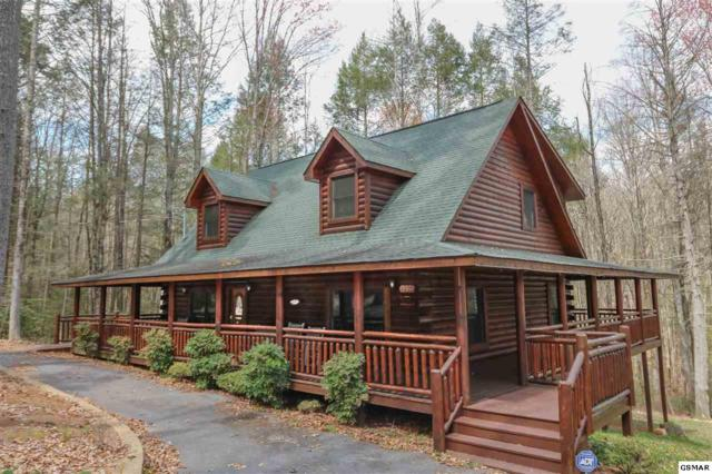 2225 Cub Circle, Sevierville, TN 37862 (#216256) :: Billy Houston Group