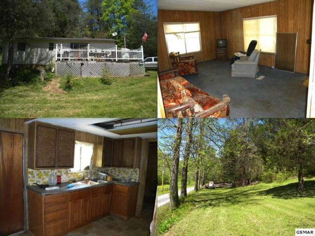 944 Baysinger Road, Newport, TN 37821 (#216262) :: SMOKY's Real Estate LLC