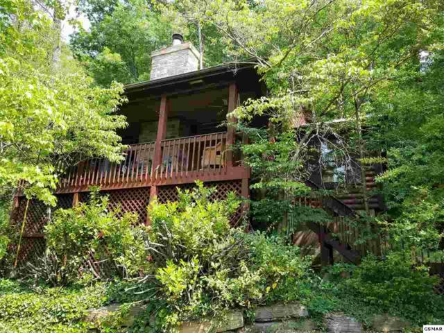 150 Smoky Mountain Way Cabin 6, Sevierville, TN 37876 (#216270) :: Billy Houston Group
