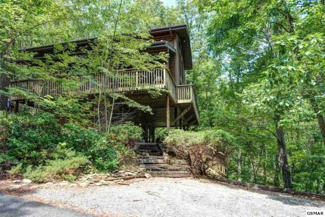 "929 Scenic Trail ""Scenic Vista"", Gatlinburg, TN 37738 (#216278) :: Billy Houston Group"