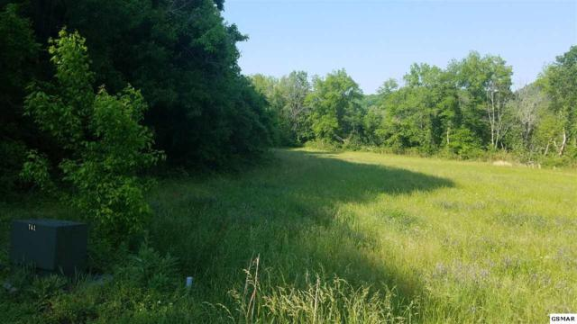Lot 57 River Rapids Way, Del Rio, TN 37727 (#216279) :: Billy Houston Group