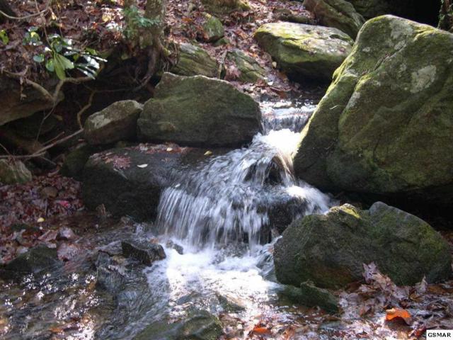 Lot Lot C-10 Watercress Way, Gatlinburg, TN 34994 (#216299) :: Billy Houston Group