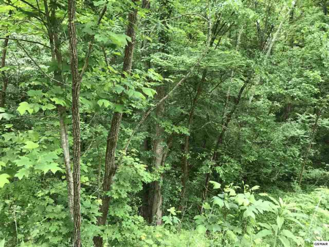 Lot 23 Burning Oaks Dr., Sevierville, TN 37876 (#216305) :: Billy Houston Group