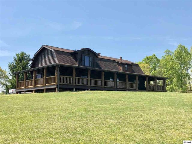 2055 Musick Road, Morristown, TN 37814 (#216326) :: Colonial Real Estate