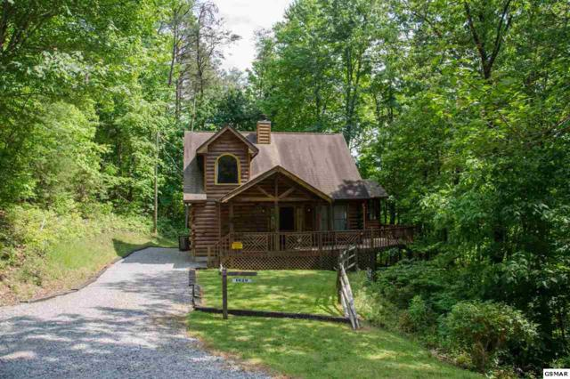 1020 Vine Ct, Sevierville, TN 37876 (#216336) :: Four Seasons Realty, Inc