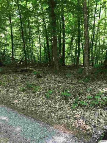 Lot 2 Ownby Rd., Sevierville, TN 37862 (#216341) :: Billy Houston Group