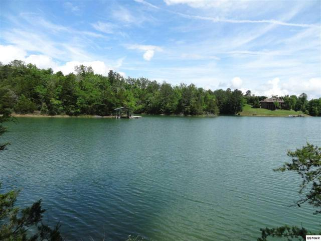 Kerr Rd - Lot 4, Sevierville, TN 37876 (#216351) :: Billy Houston Group