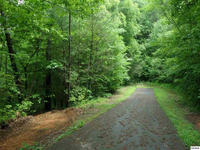 Lot Lot Lot 23 Charles Way, Sevierville, TN 37876 (#216361) :: Billy Houston Group