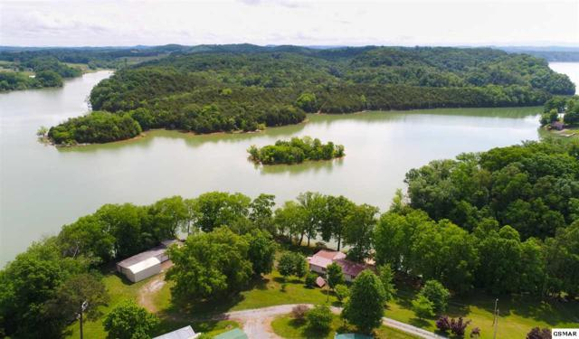 126 Violet Lane, White Pine, TN 37890 (#216384) :: Four Seasons Realty, Inc