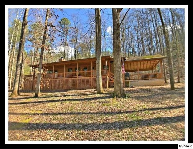 """3623 Ginseng Way """"Can't Wait To , Sevierville, TN 37862 (#216388) :: The Terrell Team"""