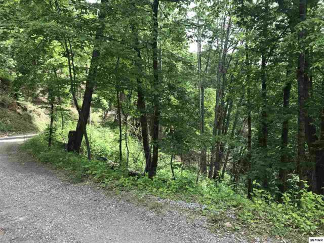 Lot 28 Sourwood Way, Sevierville, TN 37876 (#216398) :: Billy Houston Group