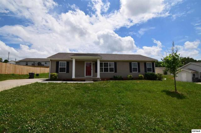 1153 Case View Rd, Dandridge, TN 37725 (#216404) :: The Terrell Team