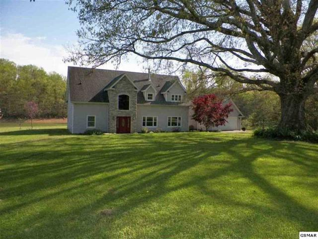 373 Terry Point Rd, Dandridge, TN 37725 (#216405) :: Colonial Real Estate