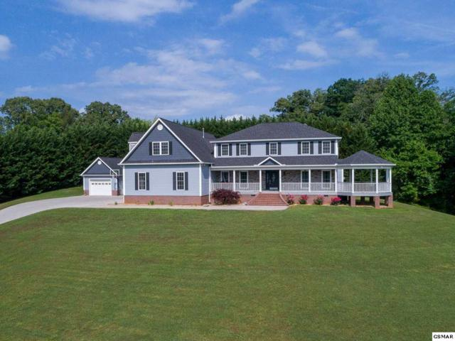 1521 Broad River Lane, Sevierville, TN 37876 (#216408) :: Billy Houston Group