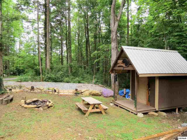 152 Baxter Rd, Cosby, TN 37722 (#216409) :: Colonial Real Estate
