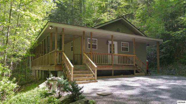 379 Norton Creek Road, Gatlinburg, TN 37738 (#216420) :: The Terrell Team
