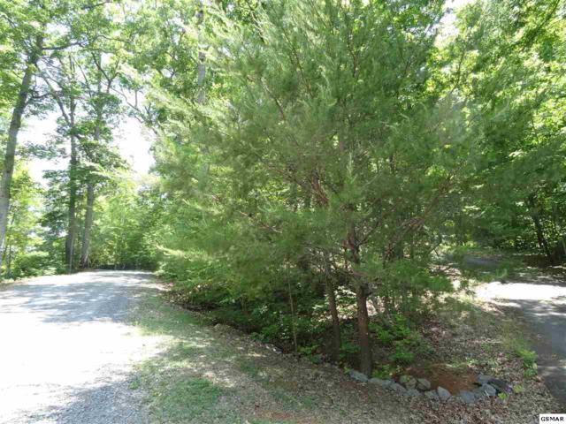 Johnson Road Lot 11, Kodak, TN 37764 (#216433) :: Billy Houston Group