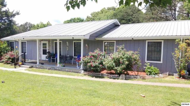 1625 Shale Rd, Newport, TN 37821 (#216441) :: The Terrell Team