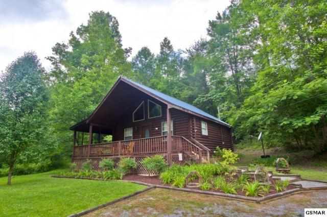 3042 Grassy Branch Loop, Sevierville, TN 37876 (#216449) :: Colonial Real Estate