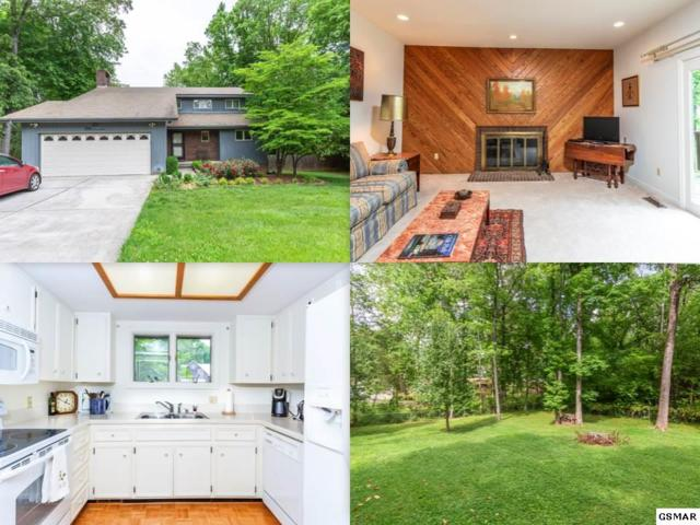 320 Birchwood Lane, Sevierville, TN 37862 (#216461) :: Colonial Real Estate