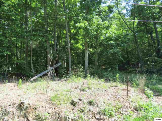 Lot 50 Green Bay Dr., Sevierville, TN 37876 (#216462) :: Colonial Real Estate