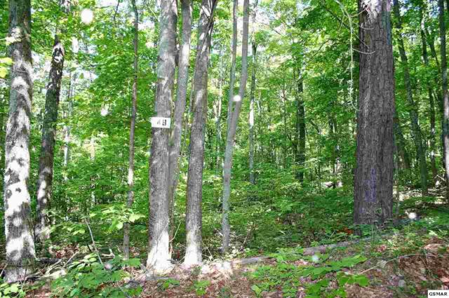 Lot 49 Green Bay Dr., Sevierville, TN 37876 (#216475) :: Colonial Real Estate