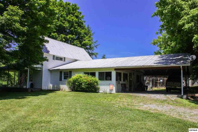 3501 Birds Creek Road Old Birds Creek, Sevierville, TN 37876 (#216477) :: Colonial Real Estate