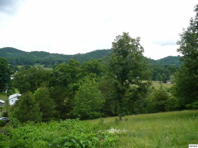 Lot Lot #10 J H Headrick Drive, Sevierville, TN 37862 (#216479) :: Billy Houston Group