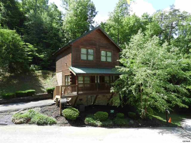 645 Chickasaw Gap Way, Pigeon Forge, TN 37863 (#216488) :: Colonial Real Estate