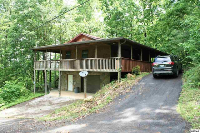 175 N Grand Country Way, Cosby, TN 37722 (#216493) :: Four Seasons Realty, Inc