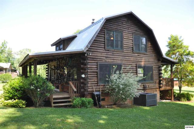 3509 Ginseng Way, Sevierville, TN 37862 (#216494) :: Billy Houston Group