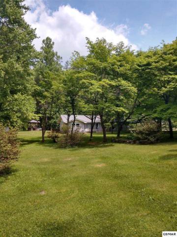4527 E Scenic Drive, Gatlinburg, TN 37738 (#216511) :: Four Seasons Realty, Inc