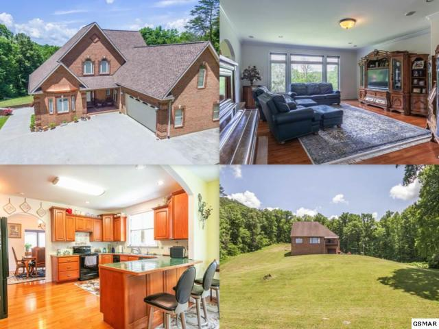 2455 River Sounds Drive, Sevierville, TN 37876 (#216512) :: The Terrell Team