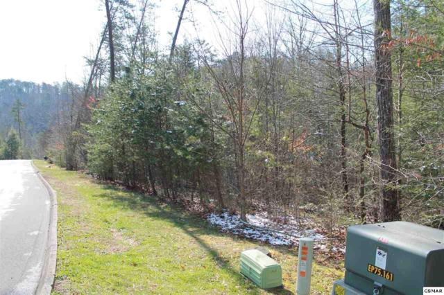 Lot 89 Smoky Cove Road, Sevierville, TN 37876 (#216516) :: Billy Houston Group