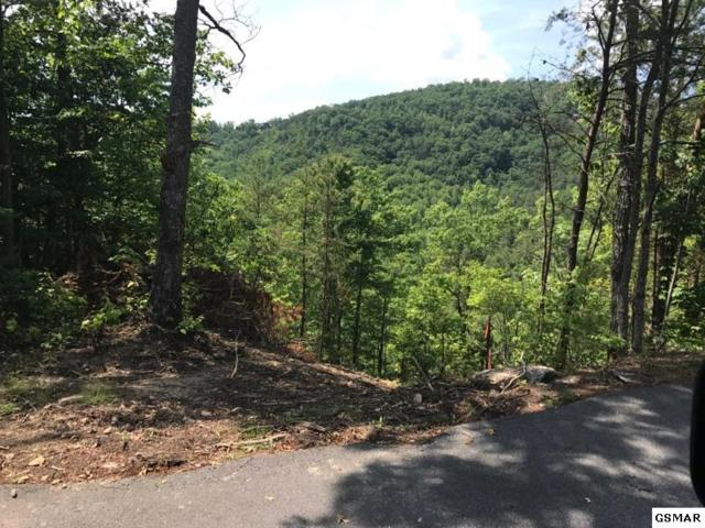 Lot 8 Chamberlain Lane Chamberlain Lan, Sevierville, TN 37862 (#216549) :: Billy Houston Group