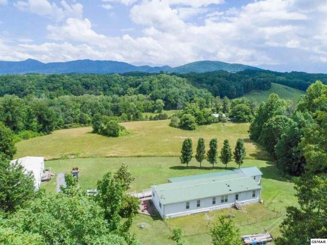 3440 Whaley Rd, Sevierville, TN 37876 (#216551) :: Four Seasons Realty, Inc