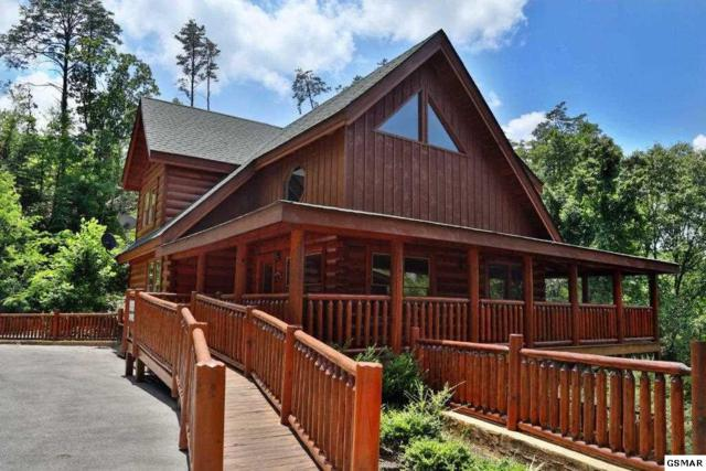 2150 Bear Haven Way Playhouse Cinem, Sevierville, TN 37876 (#216553) :: Colonial Real Estate