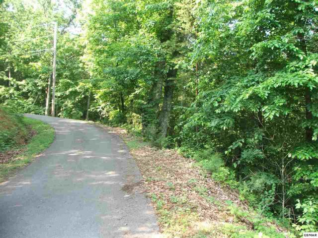 Lot 18 Hideaway Way, Sevierville, TN 37876 (#216555) :: Billy Houston Group