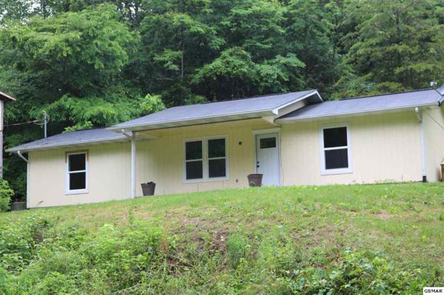 2247 Fawn View Dr, Sevierville, TN 37876 (#216562) :: Billy Houston Group