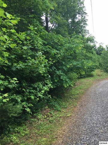 Lot 23 Greenwood Road, Newport, TN 37821 (#216566) :: Billy Houston Group